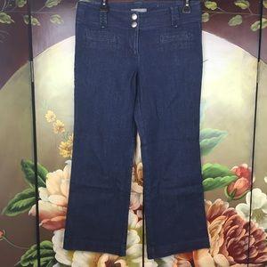 Ann Taylor Signature Fit Blue Cropped Denim Jeans
